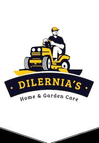 Dilernias Logo_1.2_3